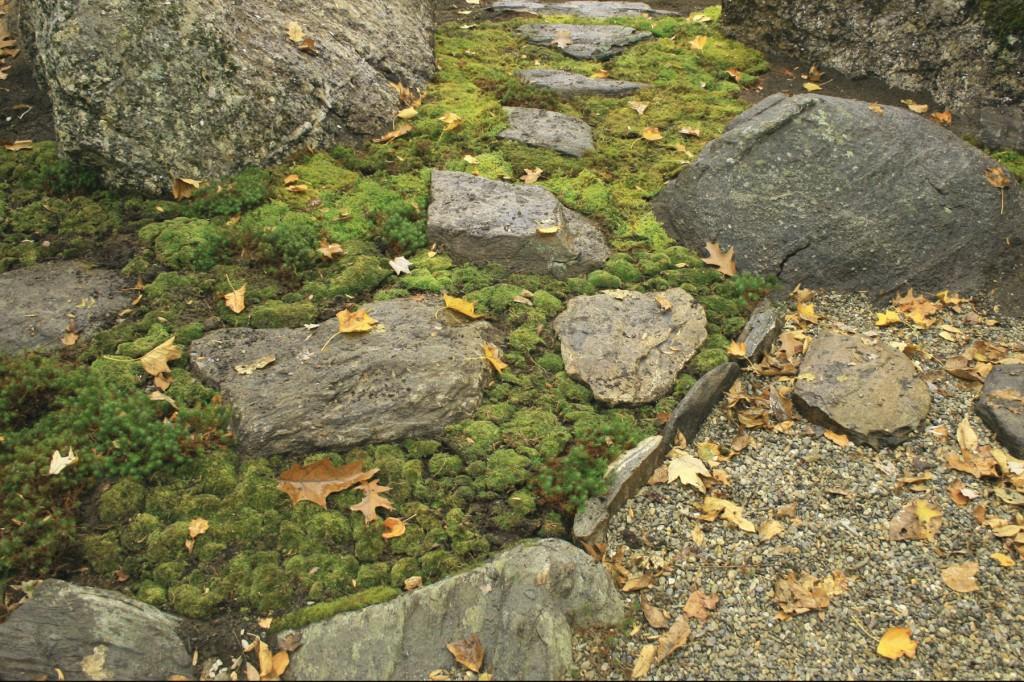 E Residence Japanese Dry Garden_3