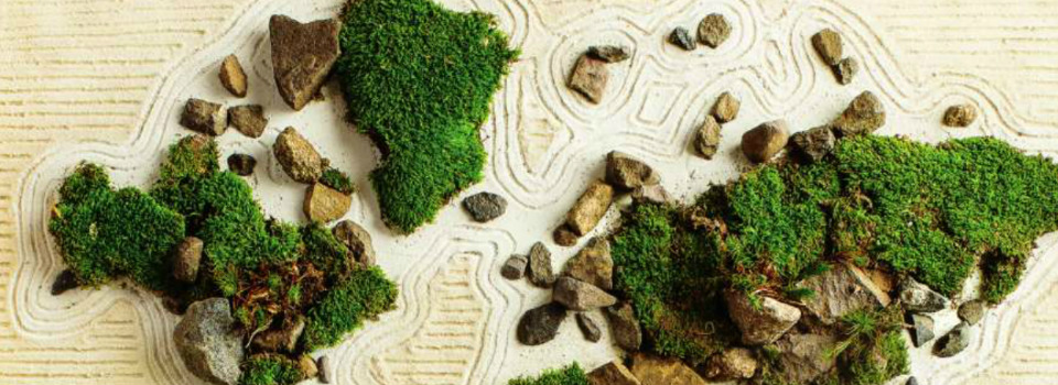 Delta Sky Miniature Japanese Garden
