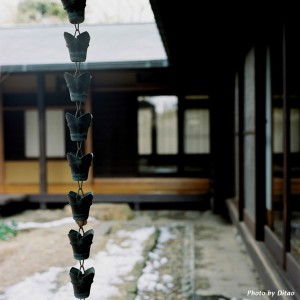 A rain chain at a Japanese temple