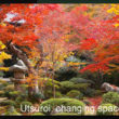 Utsuroi in Japanese Architecture and Landscape