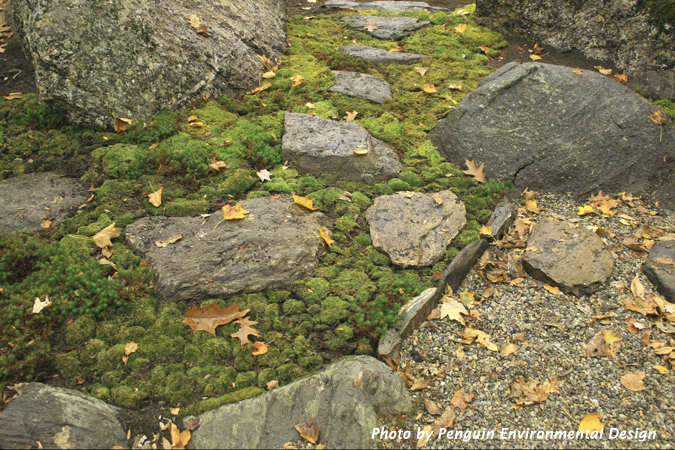 Stepping stones slow you down.