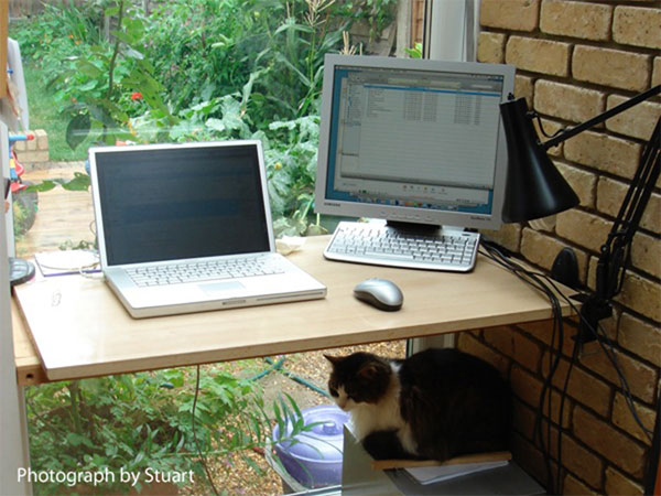 Researches on Telework and Fiber Optic Communities