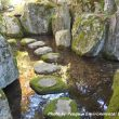 Mystery in Japanese gardens