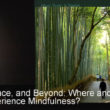 Self, Space, and Beyond: Where and How Do We Experience Mindfulness?
